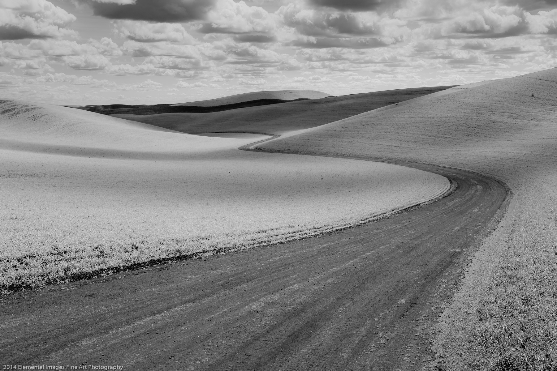 A Winding Road | The Palouse | WA | USA - © 2014 Elemental Images Fine Art Photography - All Rights Reserved Worldwide