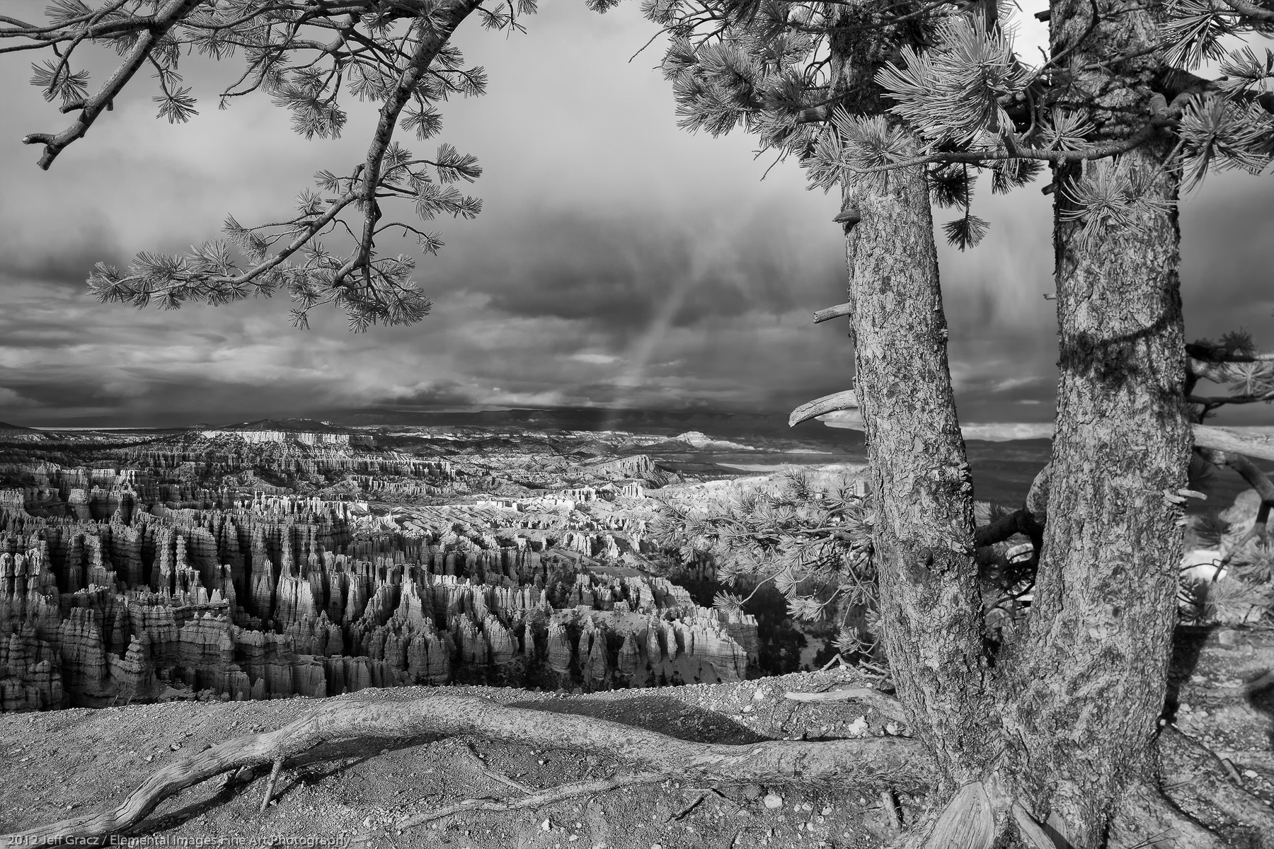 View from Bryce Canyon Rim V | Bryce Canyon National Park |  | USA - © 2012 Jeff Gracz / Elemental Images Fine Art Photography - All Rights Reserved Worldwide