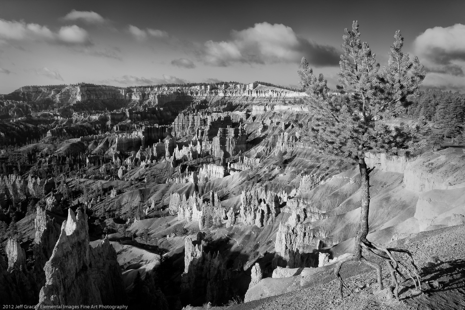 View from Bryce Canyon Rim VI | Bryce Canyon National Park |  | USA - © 2012 Jeff Gracz / Elemental Images Fine Art Photography - All Rights Reserved Worldwide