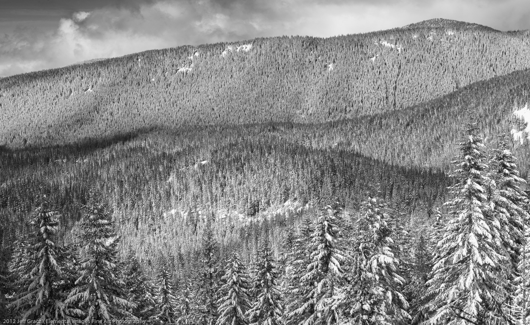 Snow Ridges | Mt Hood National Forest | OR | USA - © 2012 Jeff Gracz / Elemental Images Fine Art Photography - All Rights Reserved Worldwide