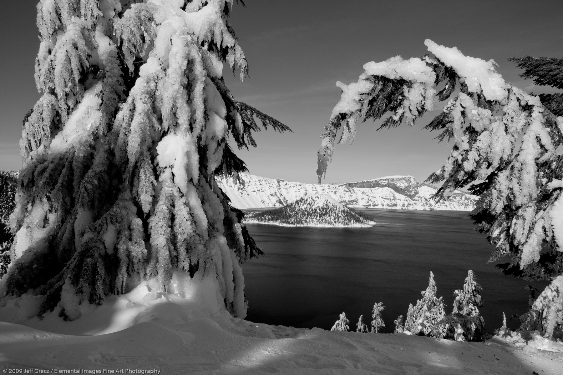 View of Wizard Island with Ice Covered Conifers |  | OR | USA - © © 2009 Jeff Gracz / Elemental Images Fine Art Photography - All Rights Reserved Worldwide