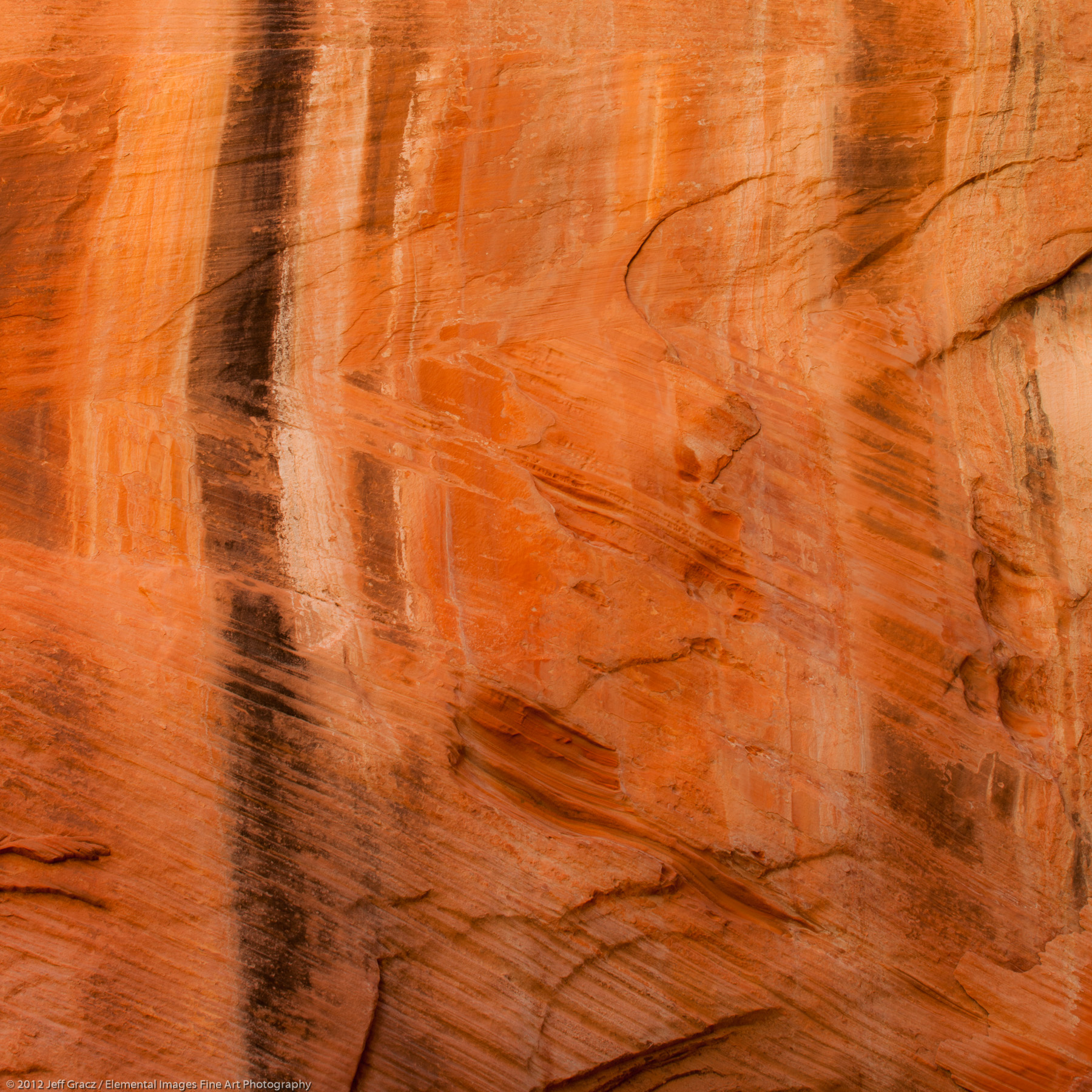 Canyon Wall IV | Zion National Park | UT | USA - © © 2012 Jeff Gracz / Elemental Images Fine Art Photography - All Rights Reserved Worldwide