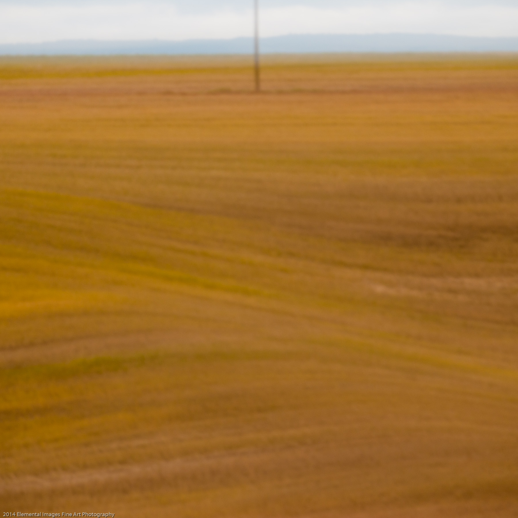 Palouse XLIV | The Palouse | WA | USA - © 2014 Elemental Images Fine Art Photography - All Rights Reserved Worldwide