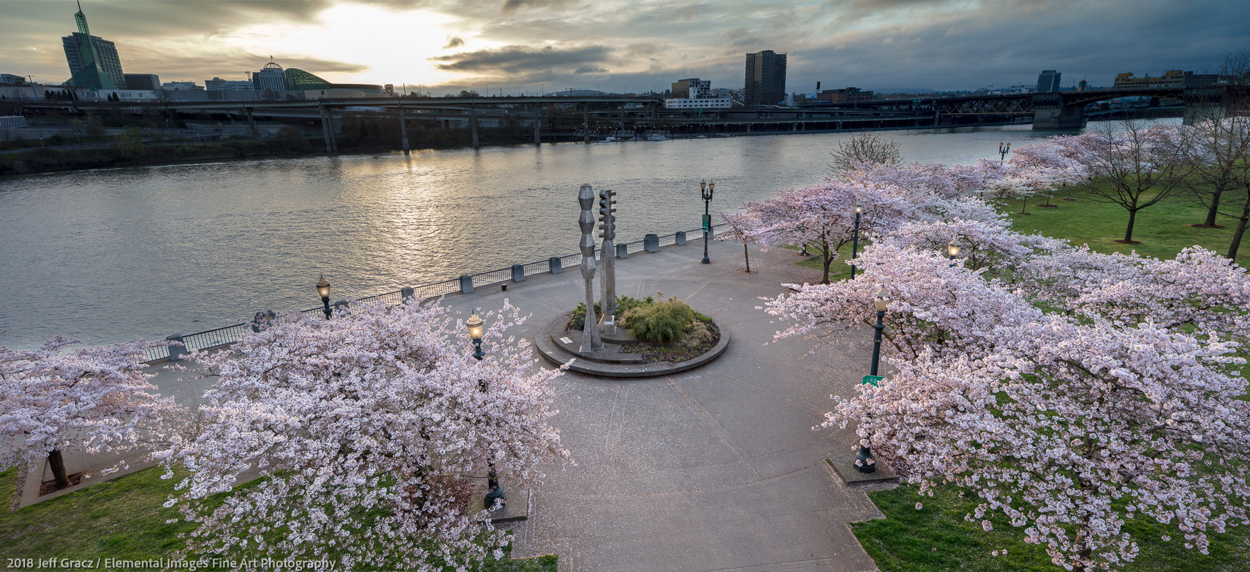 Portland Cherry Blossoms at Sunrise | Portland | OR | USA - © 2018 Jeff Gracz / Elemental Images Fine Art Photography - All Rights Reserved Worldwide