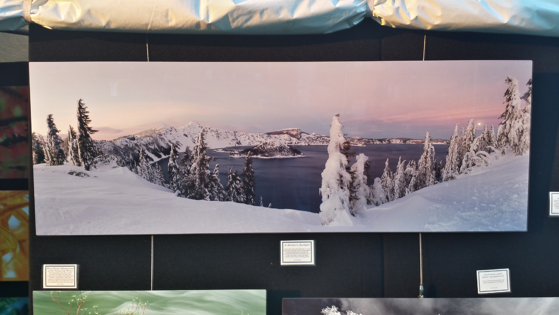 Large panorama lit up by late afternoon light at art show   Boise   ID   USA - ©  - All Rights Reserved Worldwide