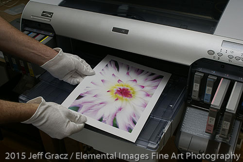 Print coming out of the printer | Vancouver | WA | USA - © 2015 Jeff Gracz / Elemental Images Fine Art Photography - All Rights Reserved Worldwide